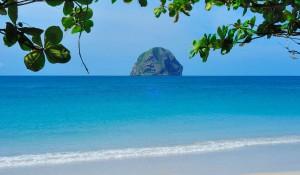 Martinique investissement